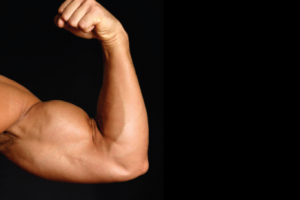 4 Tips for Bigger Arms
