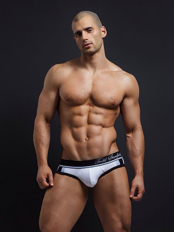 todd-sanfield-collection2014+3